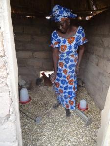 Fatou Aida nourissant les animaux +á l'int+®rieur de son poulailler